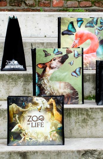 Draagtas Zoo of life